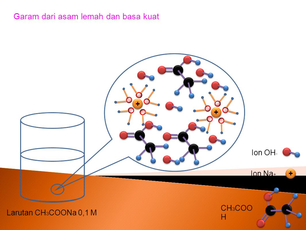 Garam dari asam lemah dan basa kuat