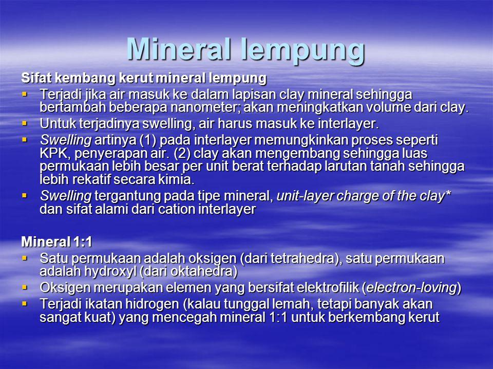 Mineral lempung Sifat kembang kerut mineral lempung