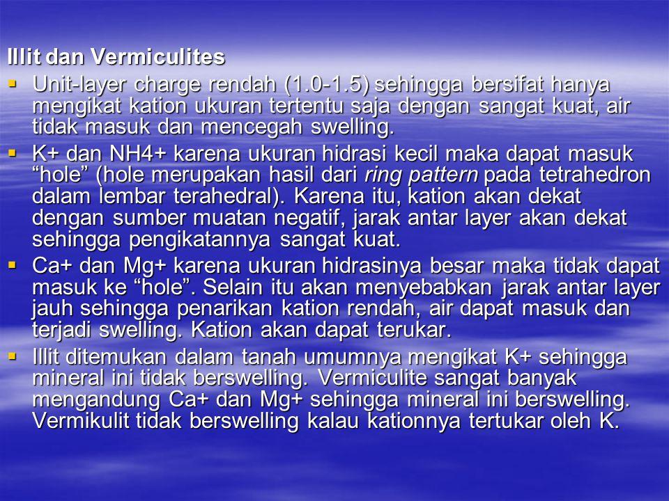 Illit dan Vermiculites