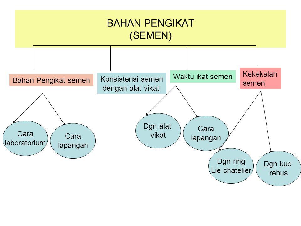 BAHAN PENGIKAT (SEMEN)
