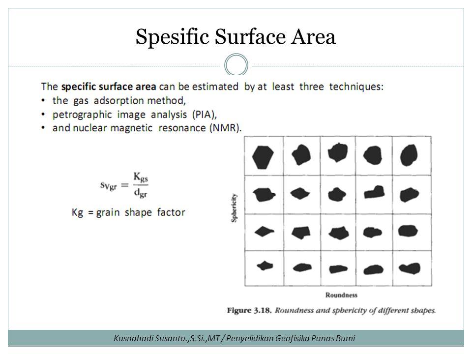 Spesific Surface Area