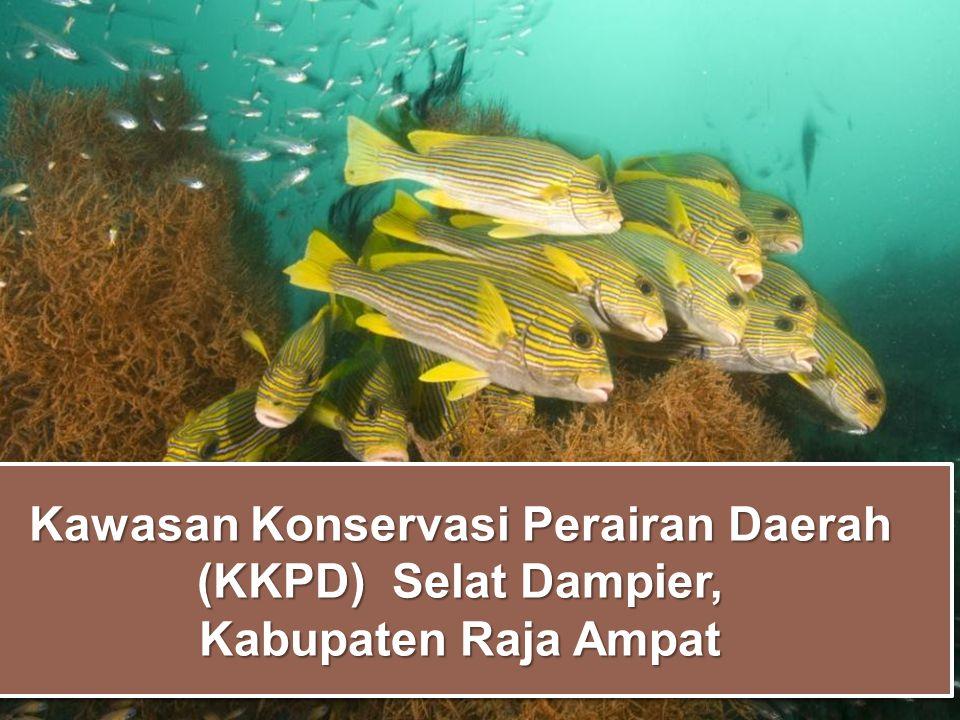 Kawasan Konservasi Perairan Daerah