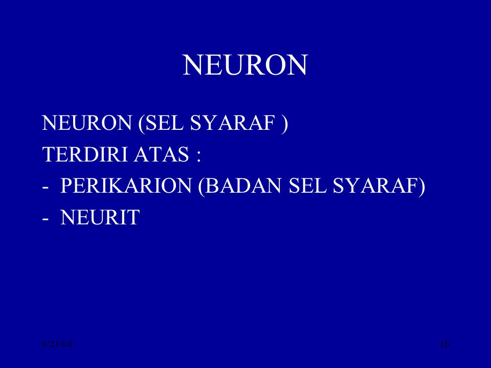 NEURON NEURON (SEL SYARAF ) TERDIRI ATAS :