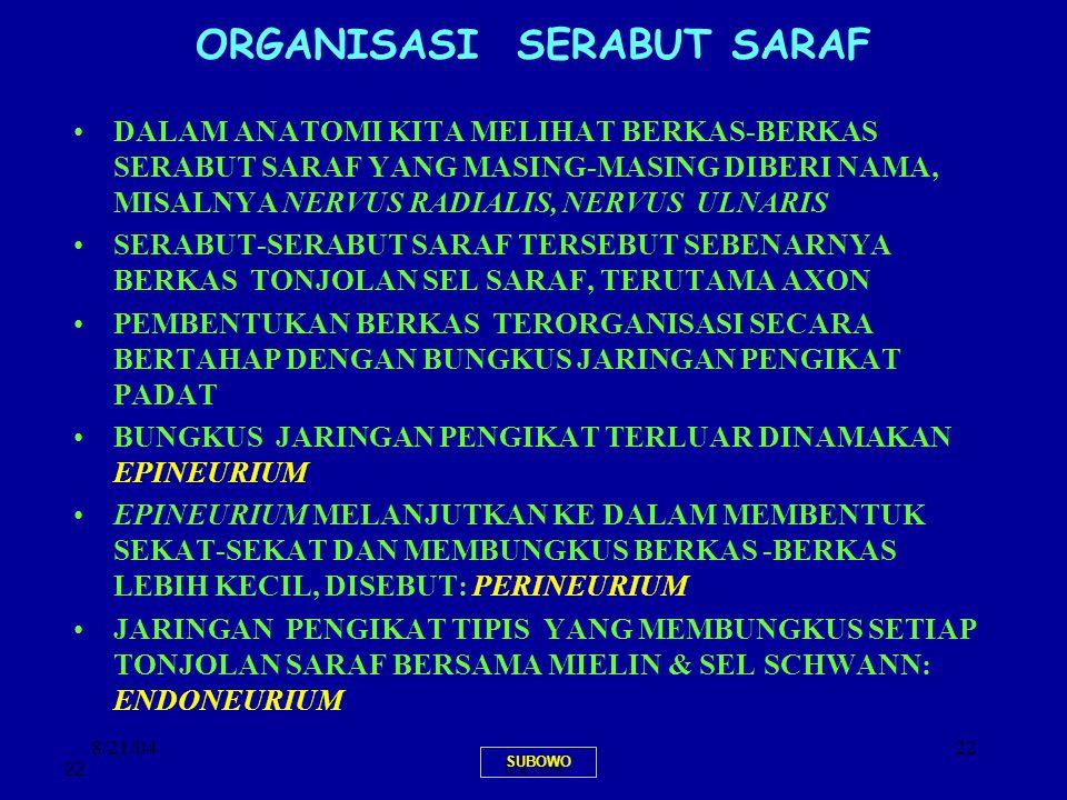 ORGANISASI SERABUT SARAF