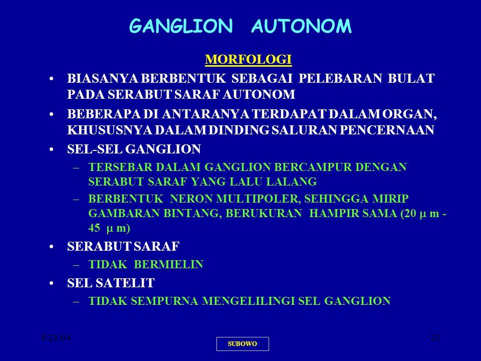 GANGLION AUTONOM MORFOLOGI