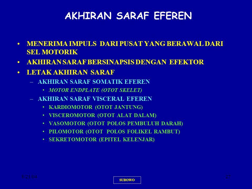 AKHIRAN SARAF EFEREN MENERIMA IMPULS DARI PUSAT YANG BERAWAL DARI SEL MOTORIK. AKHIRAN SARAF BERSINAPSIS DENGAN EFEKTOR.