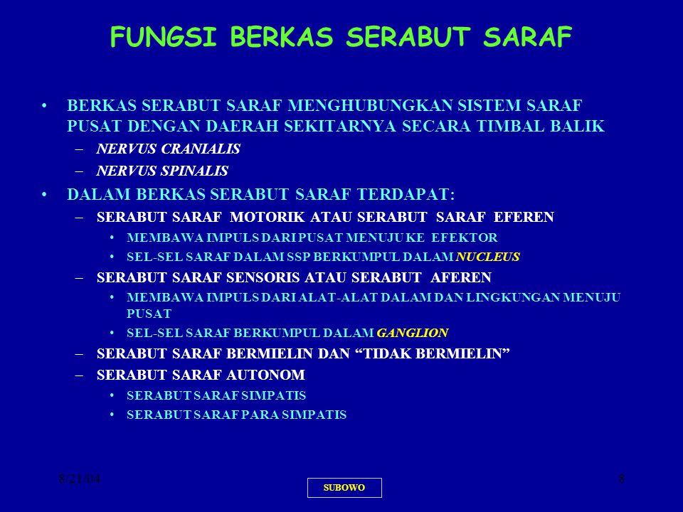 FUNGSI BERKAS SERABUT SARAF