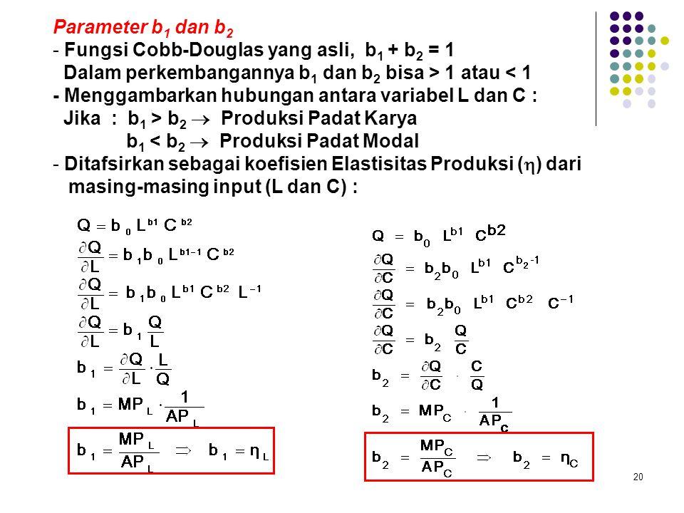 Parameter b1 dan b2 Fungsi Cobb-Douglas yang asli, b1 + b2 = 1. Dalam perkembangannya b1 dan b2 bisa > 1 atau < 1.