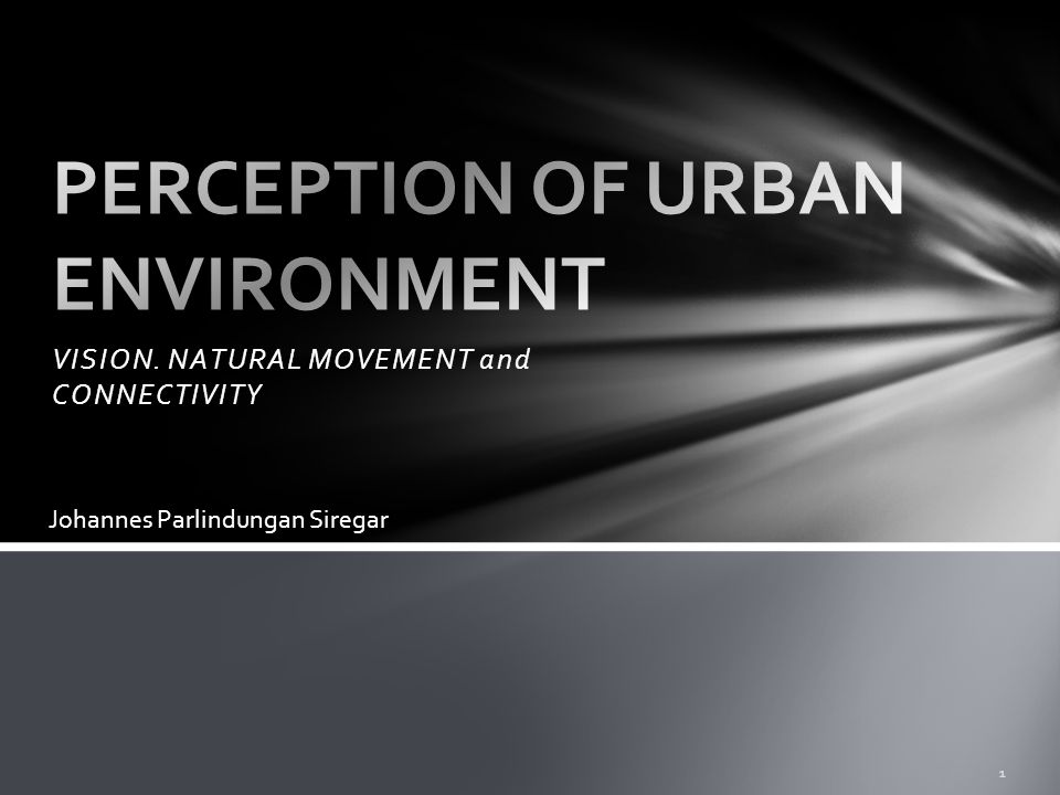 PERCEPTION OF URBAN ENVIRONMENT