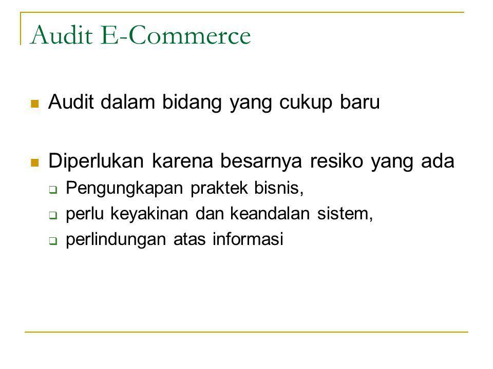 Audit E-Commerce Audit dalam bidang yang cukup baru