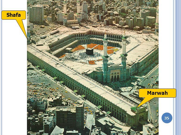 Shafa Marwah