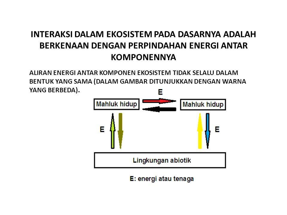 INTERAKSI DALAM EKOSISTEM PADA DASARNYA ADALAH BERKENAAN DENGAN PERPINDAHAN ENERGI ANTAR KOMPONENNYA