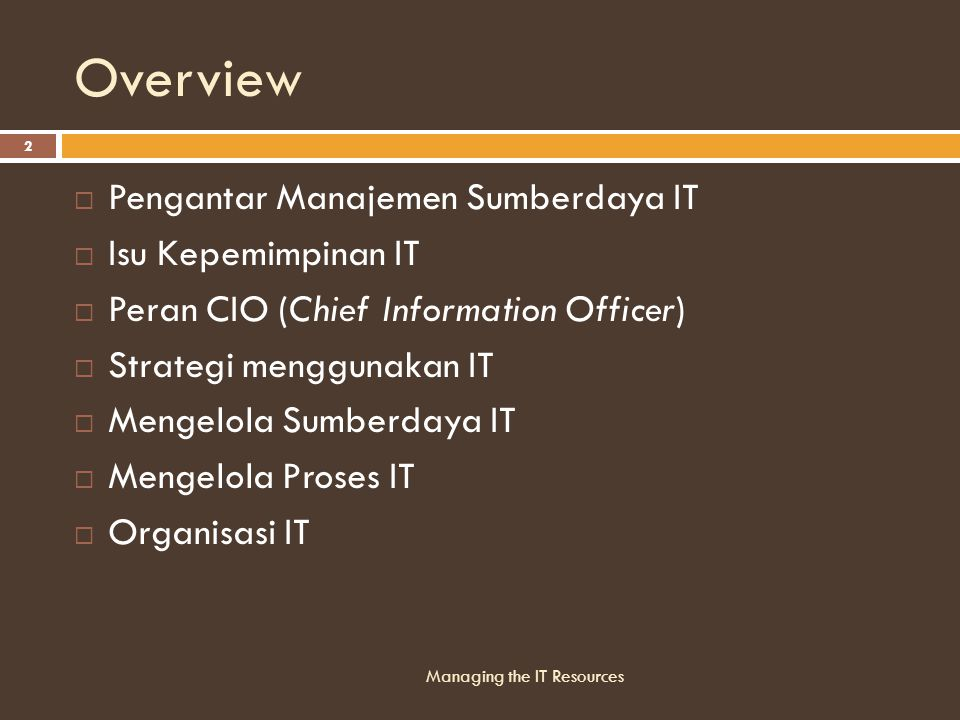 Overview Pengantar Manajemen Sumberdaya IT Isu Kepemimpinan IT