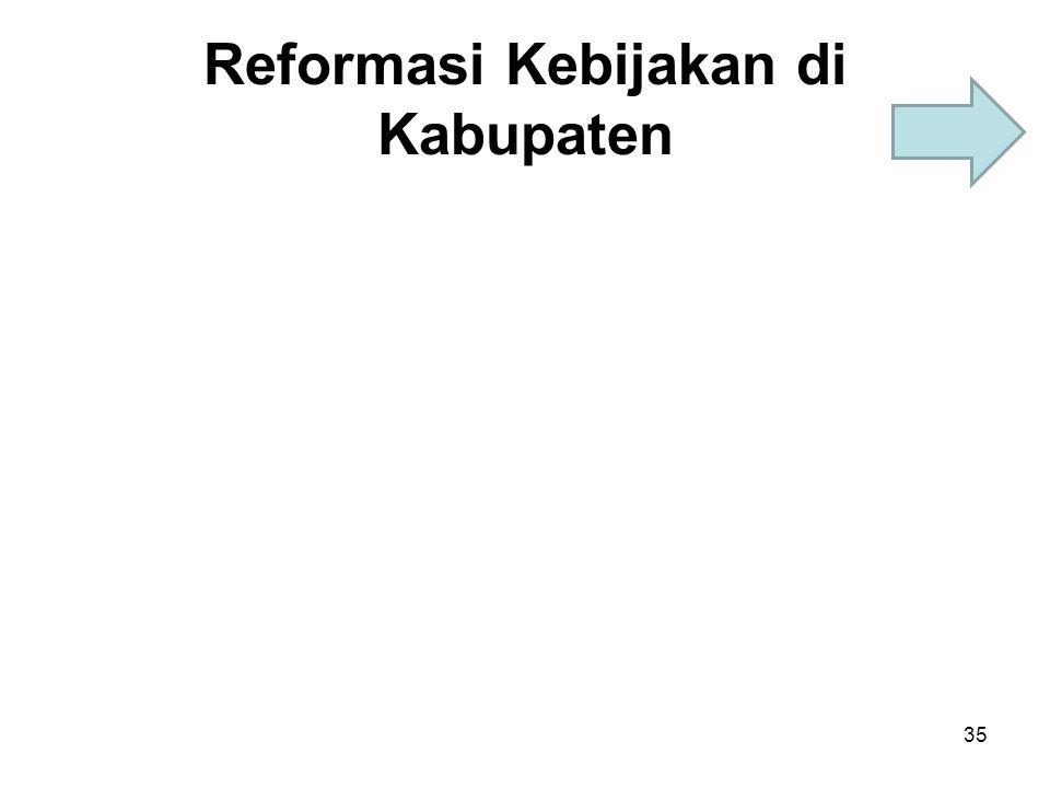 Reformasi Kebijakan di Kabupaten