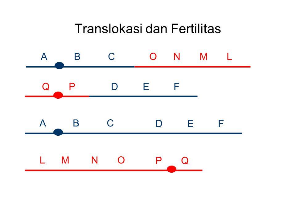 Translokasi dan Fertilitas