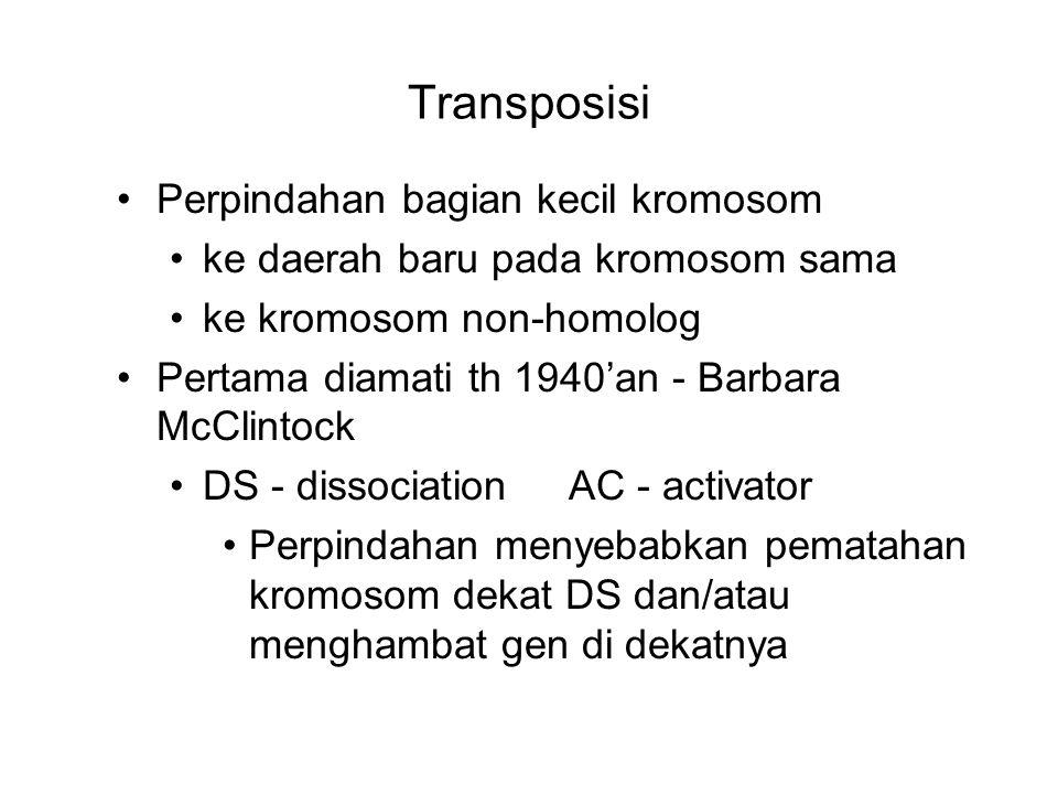 Transposisi Perpindahan bagian kecil kromosom