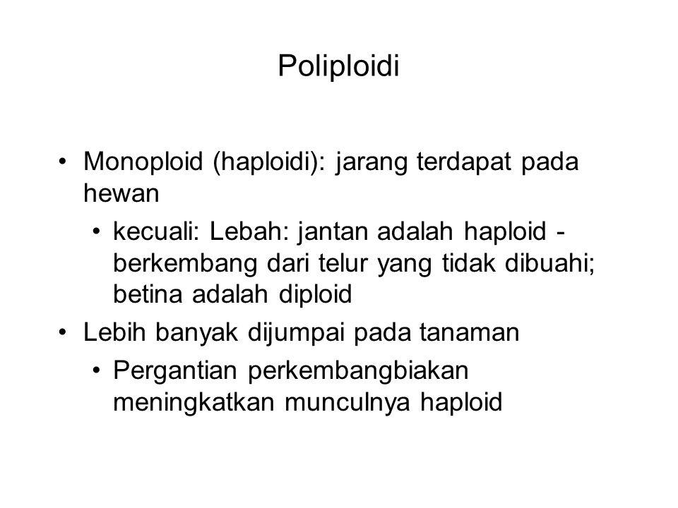 Poliploidi Monoploid (haploidi): jarang terdapat pada hewan