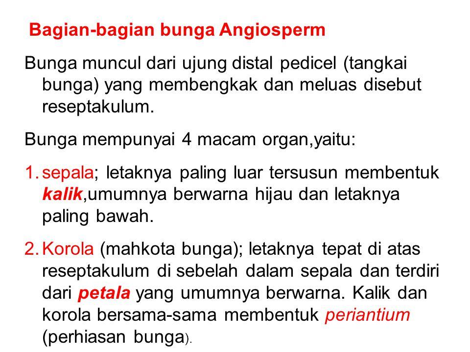 Bunga mempunyai 4 macam organ,yaitu: