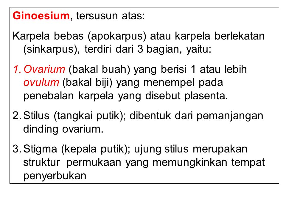 Ginoesium, tersusun atas: