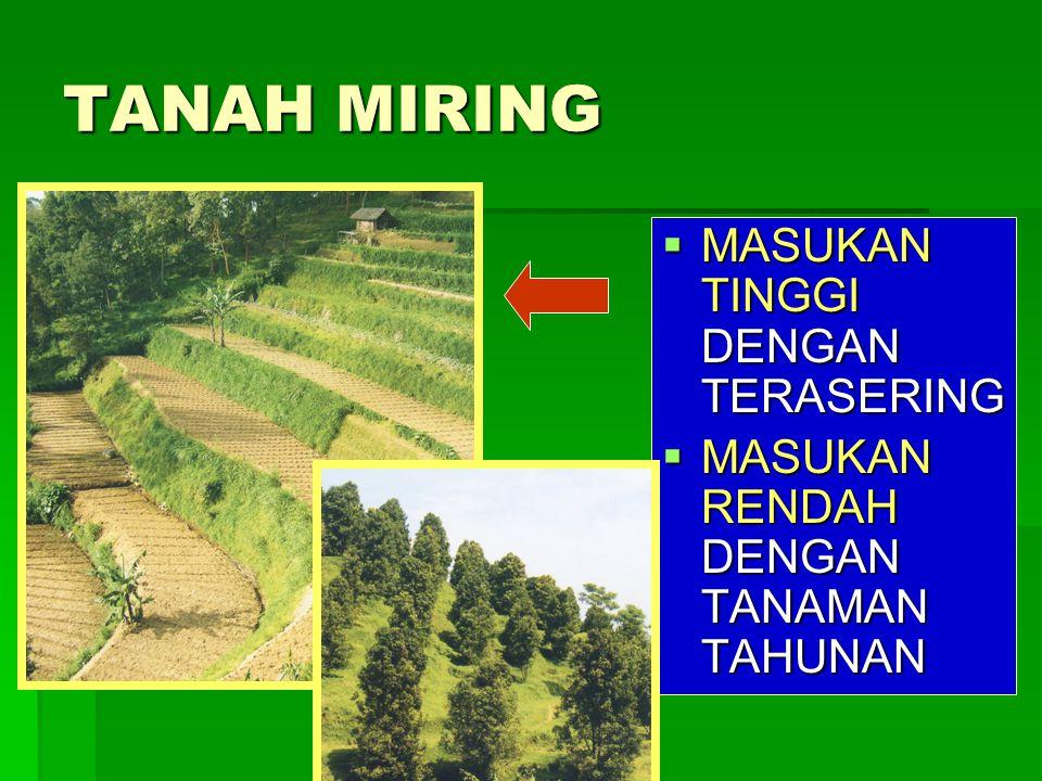TANAH MIRING MASUKAN TINGGI DENGAN TERASERING