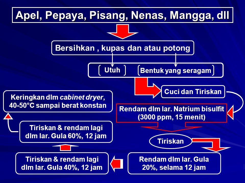 Apel, Pepaya, Pisang, Nenas, Mangga, dll