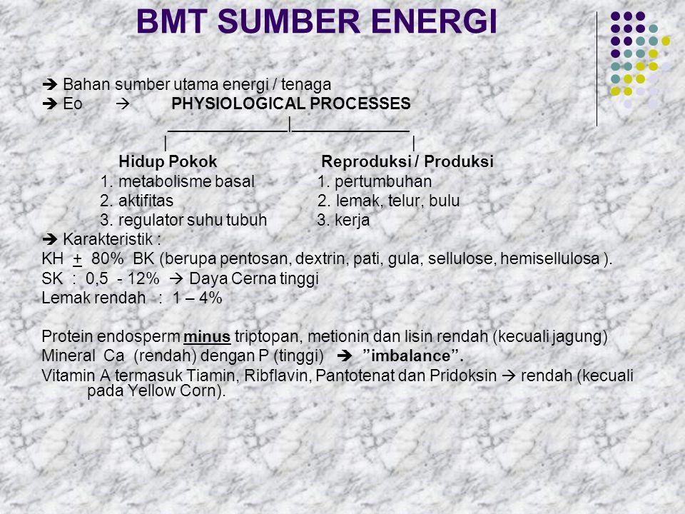 BMT SUMBER ENERGI  Bahan sumber utama energi / tenaga
