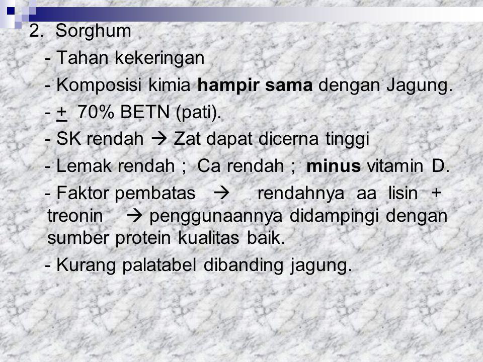 2. Sorghum - Tahan kekeringan. - Komposisi kimia hampir sama dengan Jagung. - + 70% BETN (pati).