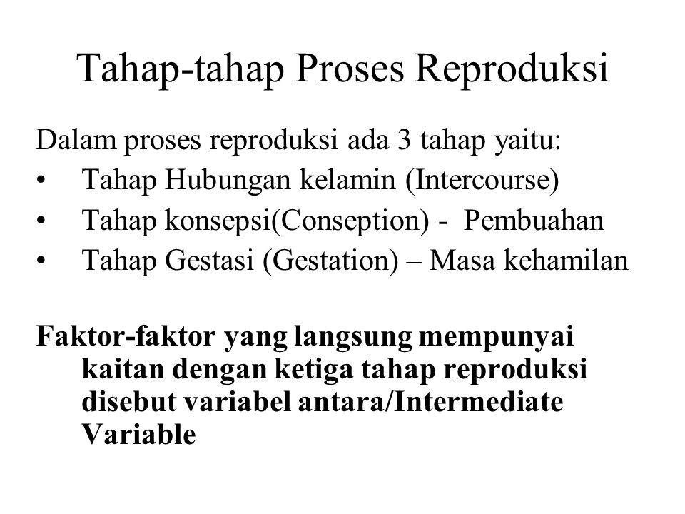 Tahap-tahap Proses Reproduksi