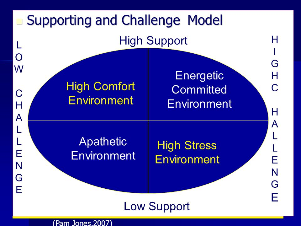 Supporting and Challenge Model