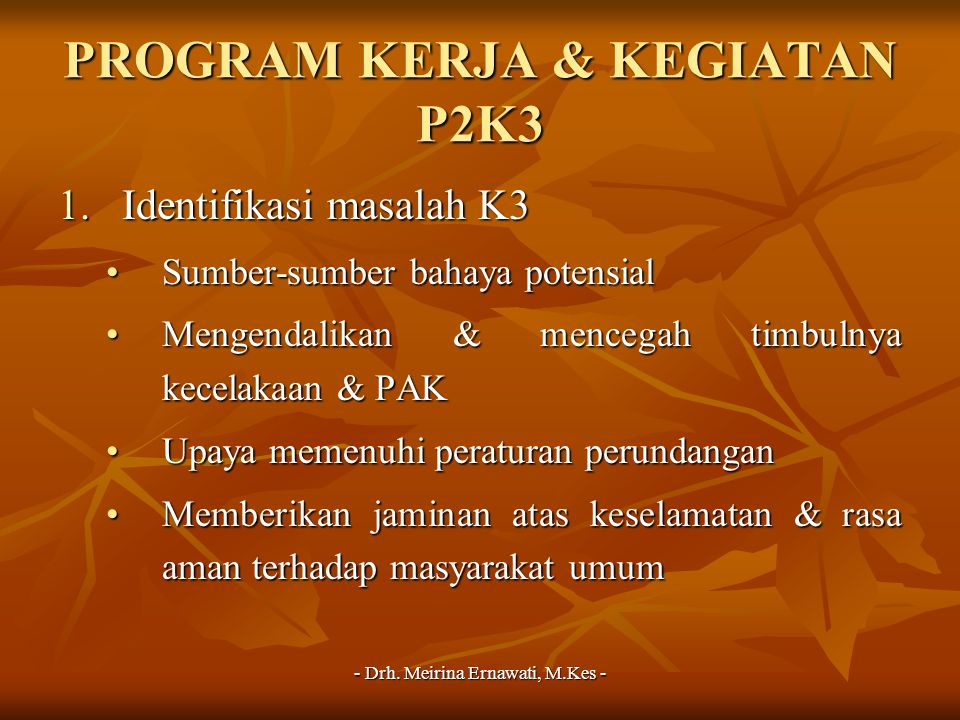 PROGRAM KERJA & KEGIATAN P2K3