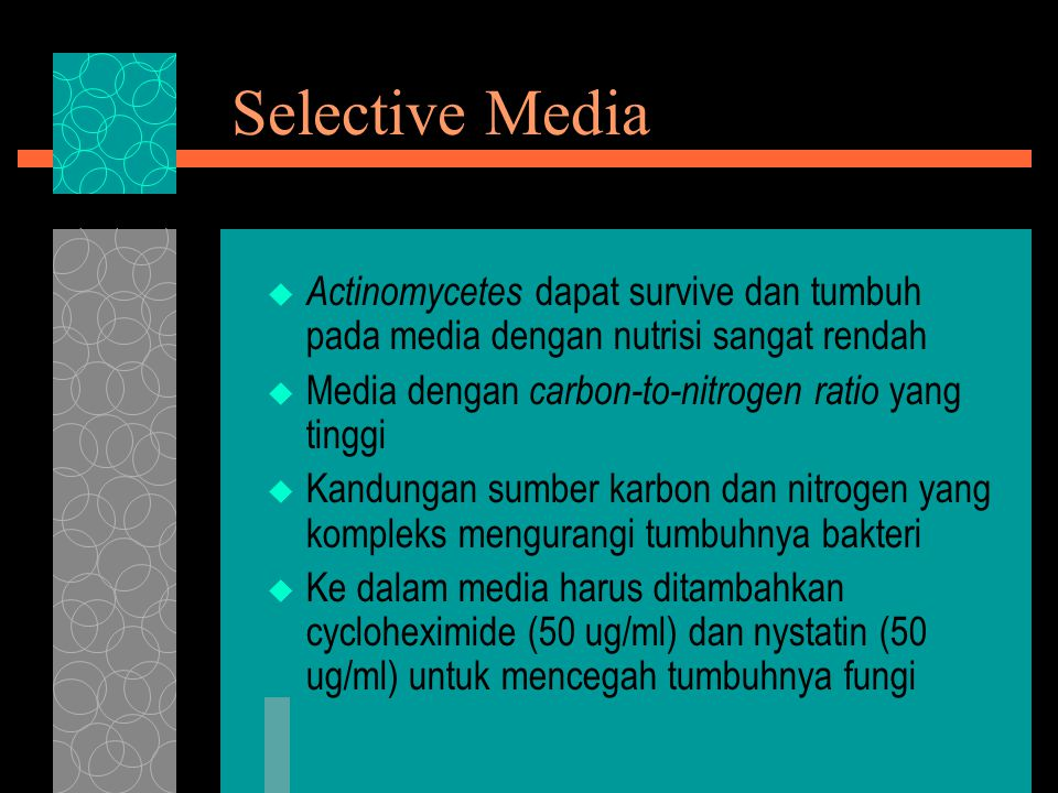 Selective Media Actinomycetes dapat survive dan tumbuh pada media dengan nutrisi sangat rendah. Media dengan carbon-to-nitrogen ratio yang tinggi.
