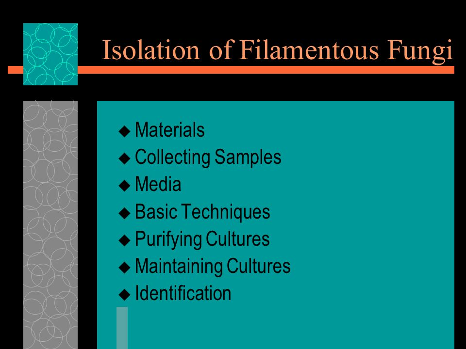 Isolation of Filamentous Fungi