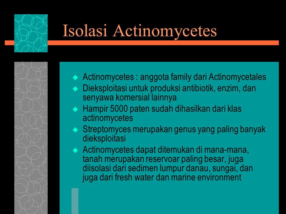 Isolasi Actinomycetes