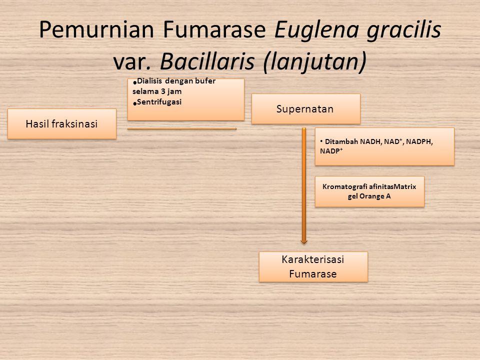 Pemurnian Fumarase Euglena gracilis var. Bacillaris (lanjutan)