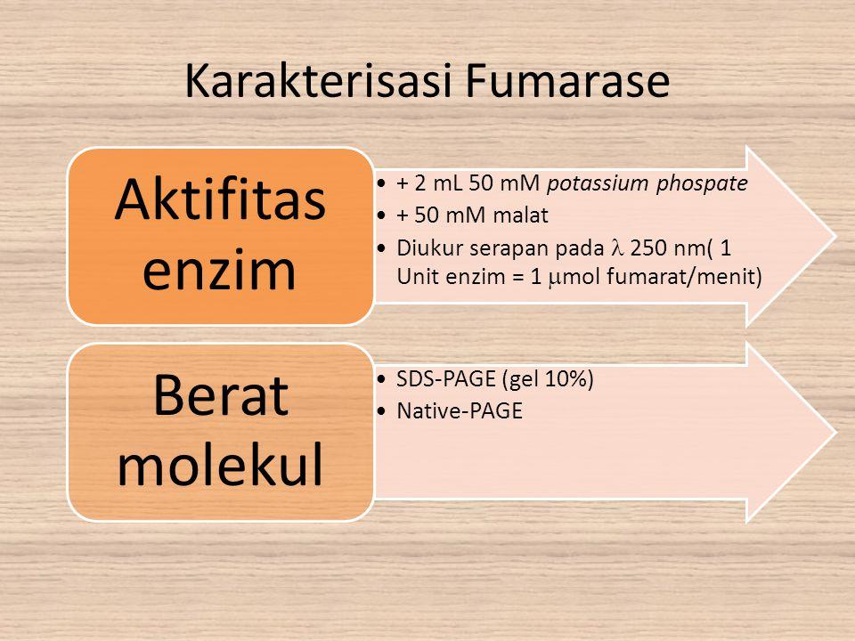Karakterisasi Fumarase