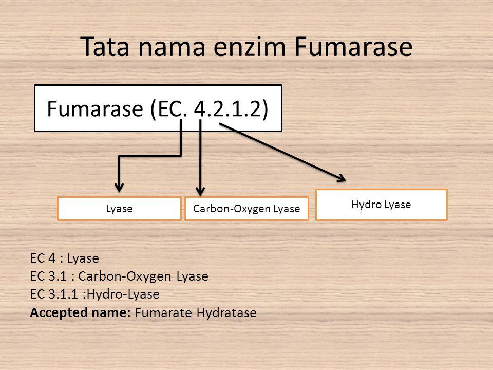 Tata nama enzim Fumarase