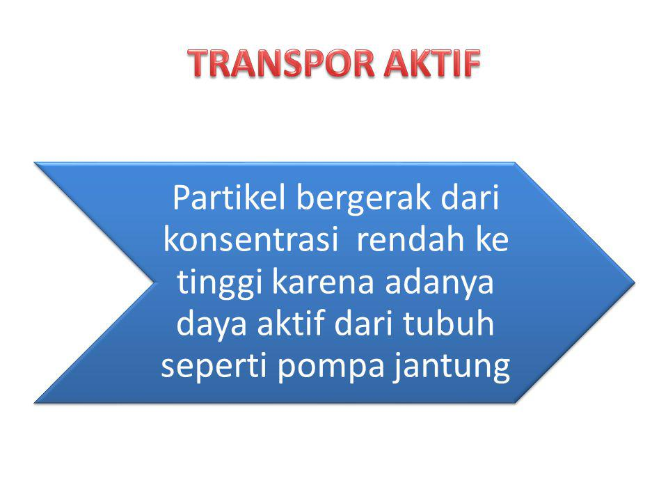 TRANSPOR AKTIF Partikel bergerak dari konsentrasi rendah ke tinggi karena adanya daya aktif dari tubuh seperti pompa jantung.