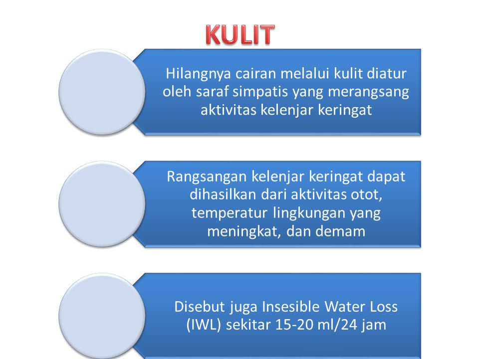 Disebut juga Insesible Water Loss (IWL) sekitar 15-20 ml/24 jam