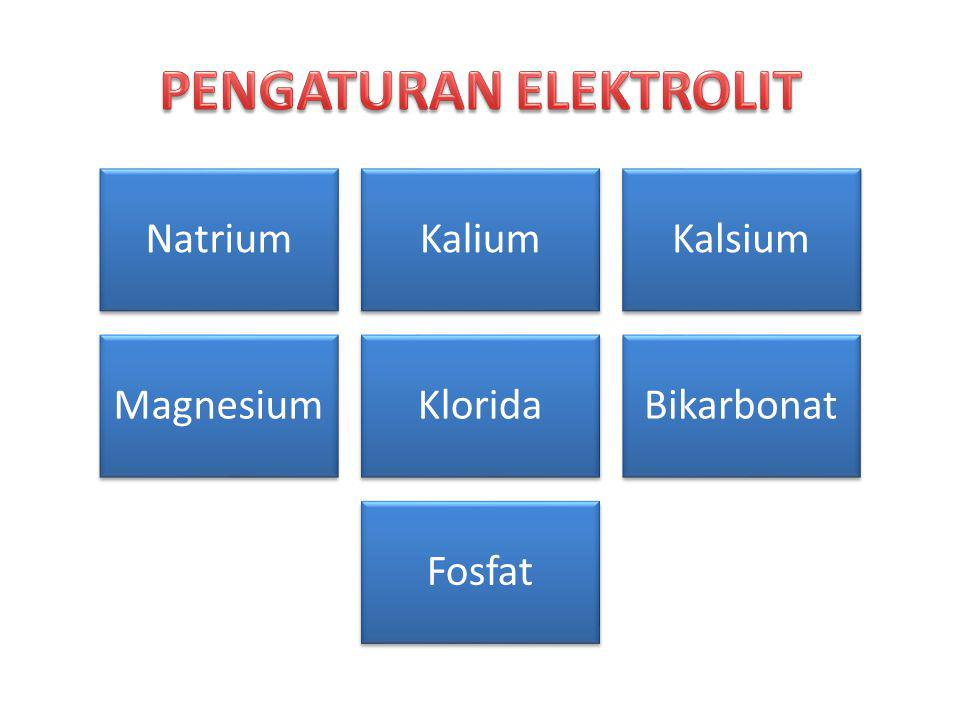 PENGATURAN ELEKTROLIT