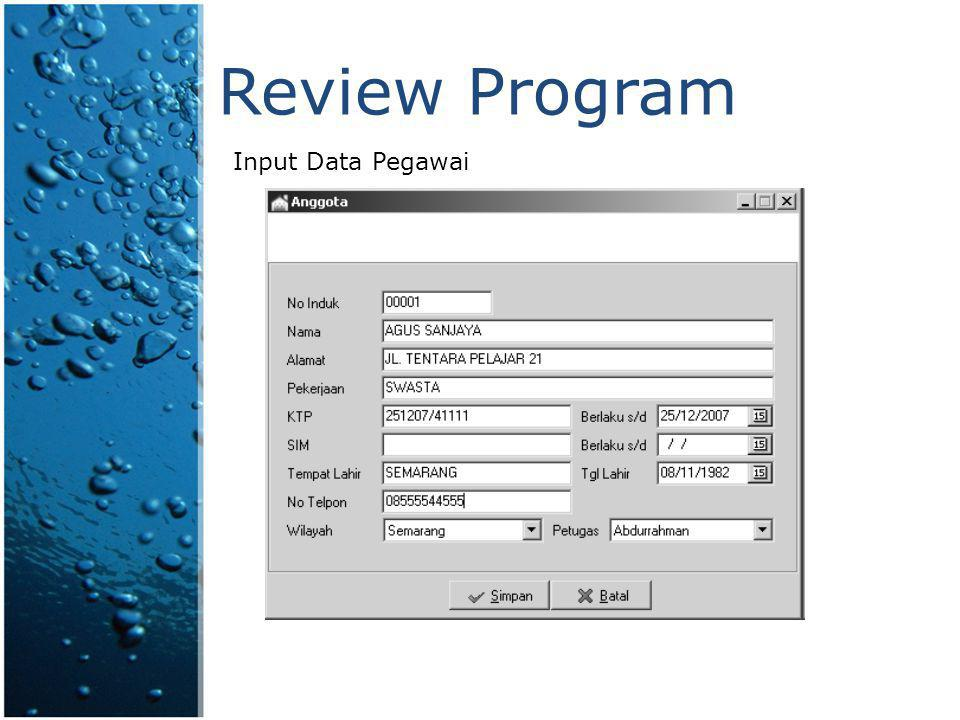 Review Program Input Data Pegawai