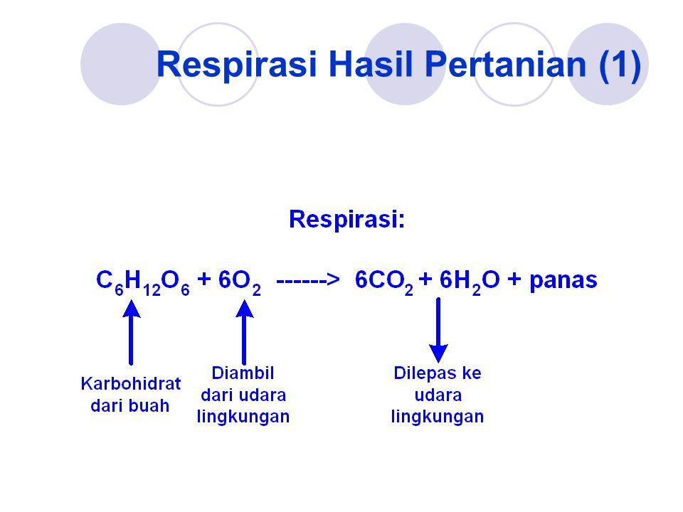 Respirasi Hasil Pertanian (1)
