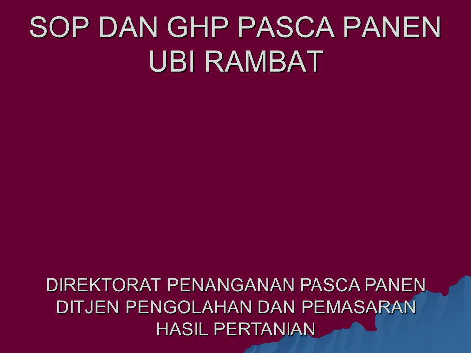 SOP DAN GHP PASCA PANEN UBI RAMBAT
