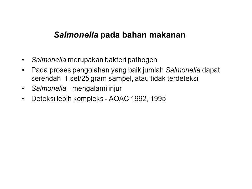 Salmonella pada bahan makanan