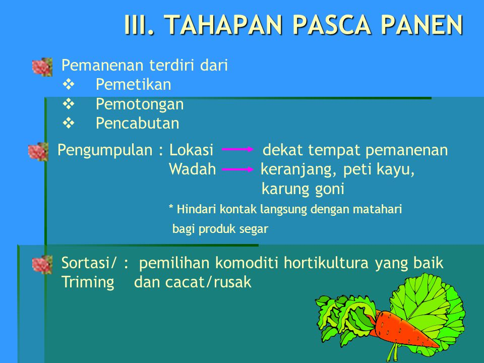 III. TAHAPAN PASCA PANEN