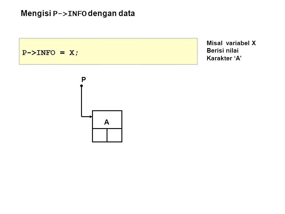 Mengisi P->INFO dengan data