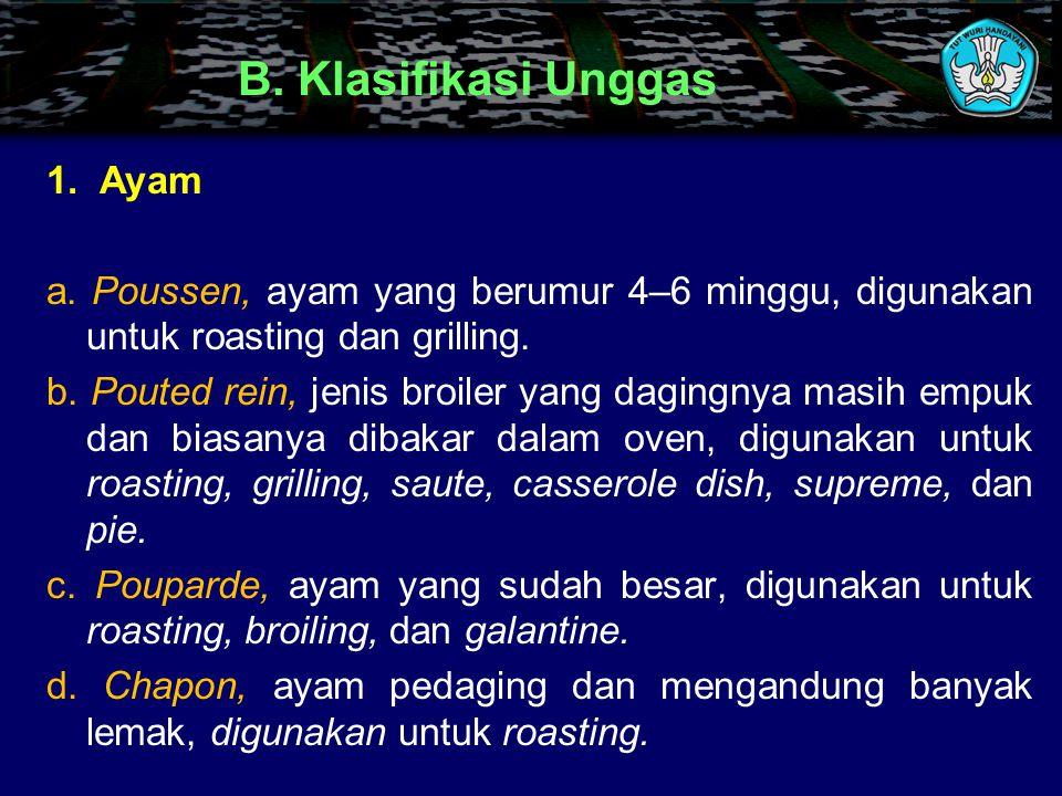 B. Klasifikasi Unggas Ayam