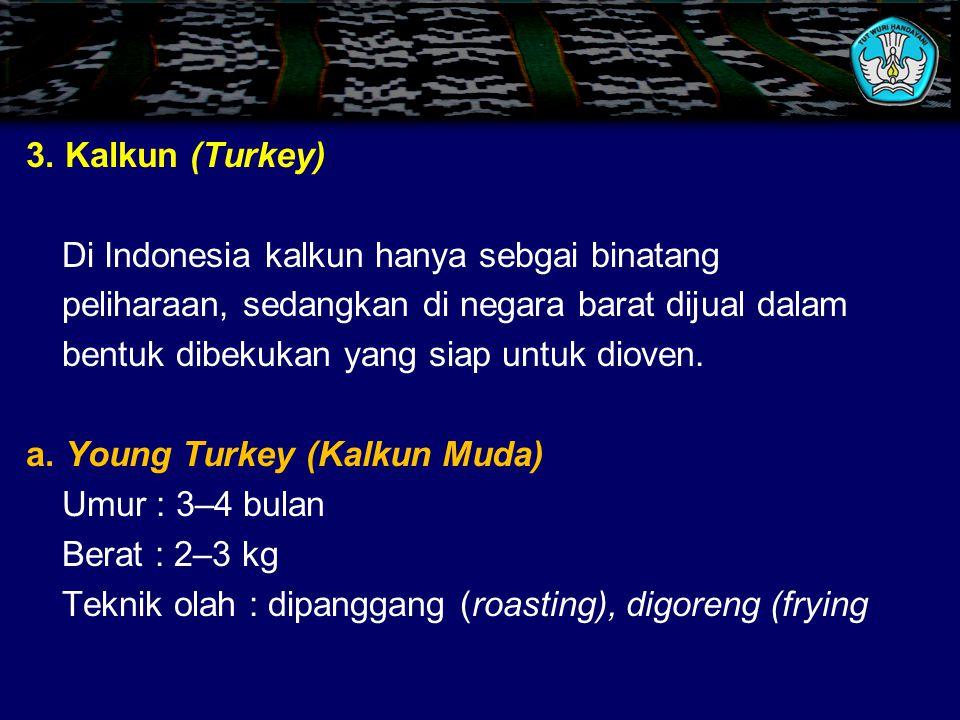 3. Kalkun (Turkey) Di Indonesia kalkun hanya sebgai binatang. peliharaan, sedangkan di negara barat dijual dalam.