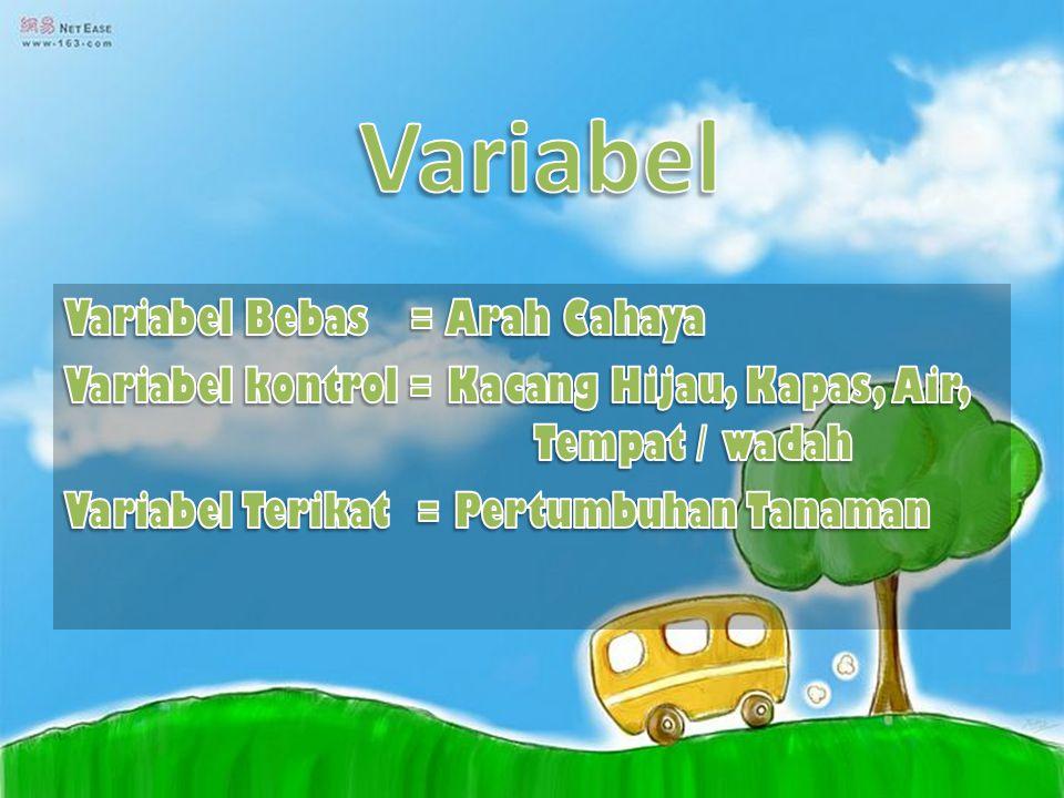 Variabel Variabel Bebas = Arah Cahaya Variabel kontrol = Kacang Hijau, Kapas, Air, Tempat / wadah Variabel Terikat = Pertumbuhan Tanaman