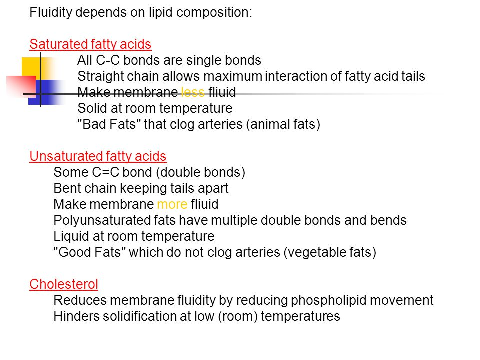 Fluidity depends on lipid composition: