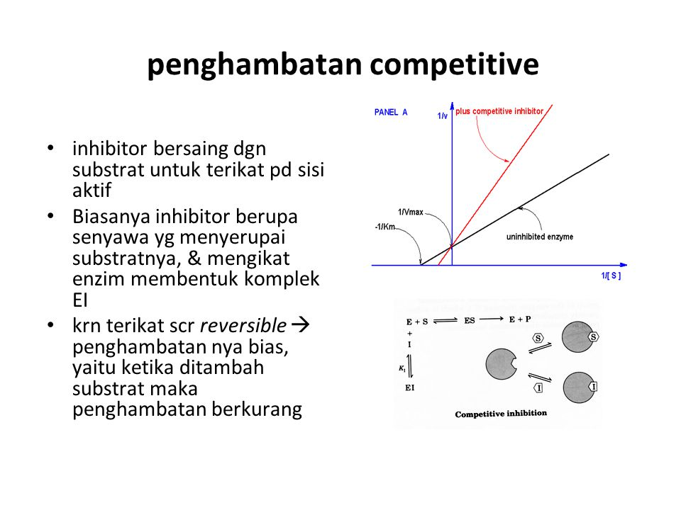 penghambatan competitive